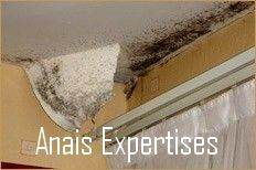 Diagnostic Expertise Humidite Independant Anais Expertises